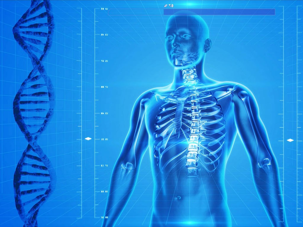 Humanmedizin--Ausbildung